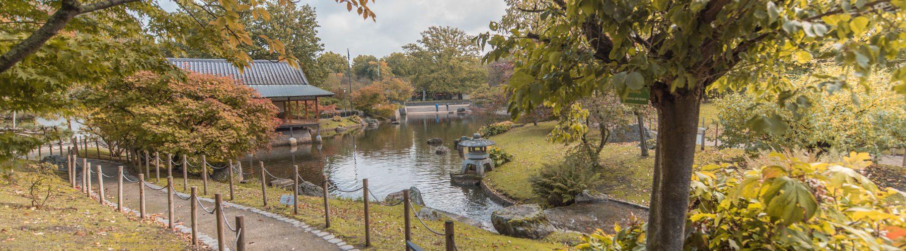 Japanse Tuin in Hasselt: Info, fotos en mijn ervaring