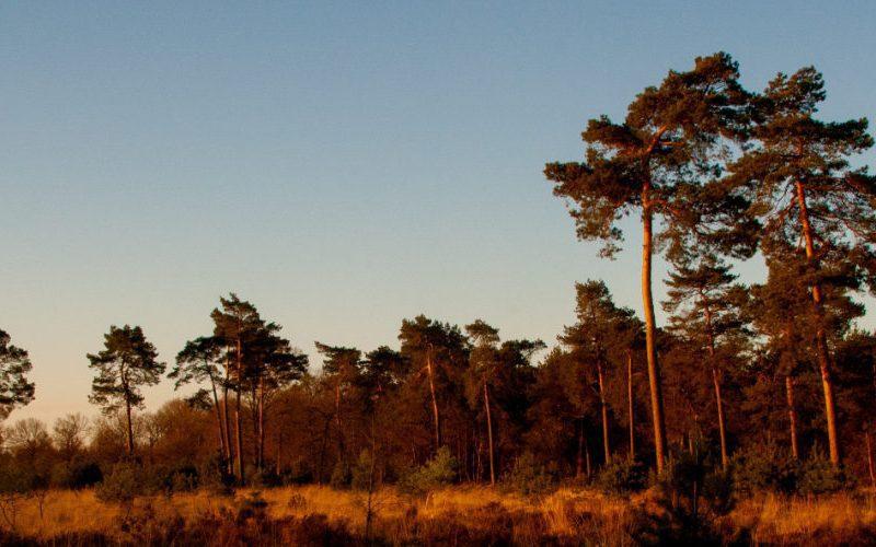 bijzonder overnachten Drenthe